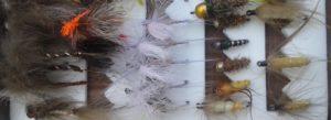 Lee más sobre el artículo Branko Killer; la mosca indispensable para Eslovenia