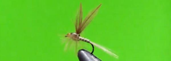 La Josu Fly; una gran mosca para disfrutar durante y después…