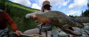 Pescado en la Red: SECRETS
