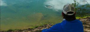 Lee más sobre el artículo Pescado en la Red: Worming up