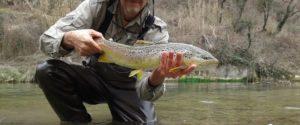 Fotos pesca: truchas recelosas