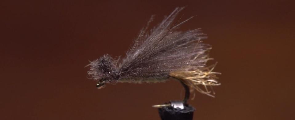 Pescado en la Red: Bighorn CDC X-Caddis 4K