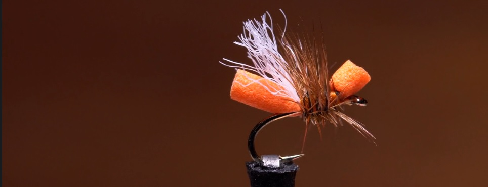 Pescado en la Red: Cinnamon Flying Ant 4k