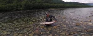 Vídeo: Salmon Fishing in Gaula; Norwegian Fly Fishers Club