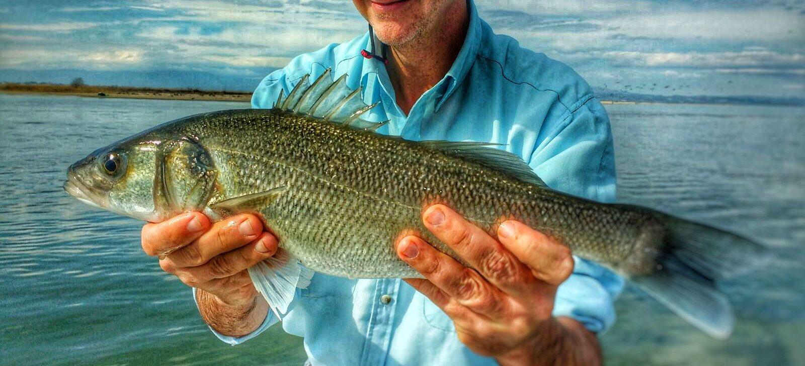 Pescar en el mar con éxito, es posible…!!