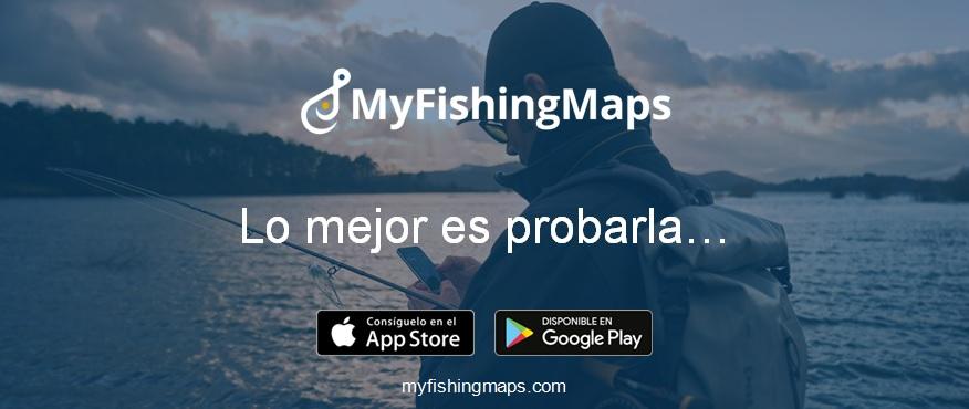 ¿Dónde y cómo puedo pescar?