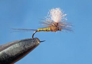 Regalo de 10 moscas secas entre los que comenten en el blog del 12 de mayo hasta el 9 de junio