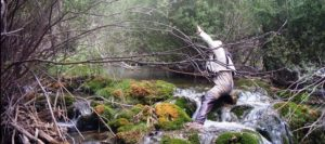 Pescando con mosca en pequeños ríos: Joaquín Herrero