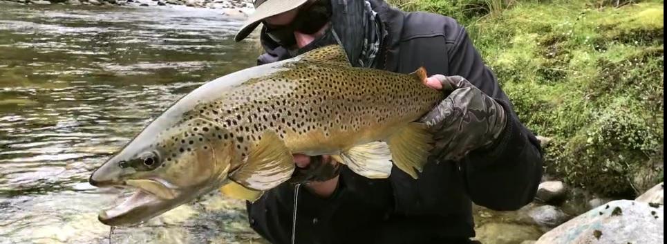 En este momento estás viendo Vídeo: NZ FLY FISHING, Traveltruly