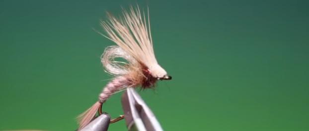 En este momento estás viendo Vídeo montaje mosca: Tying an loop wing emerging caddis Barry ord Clarke