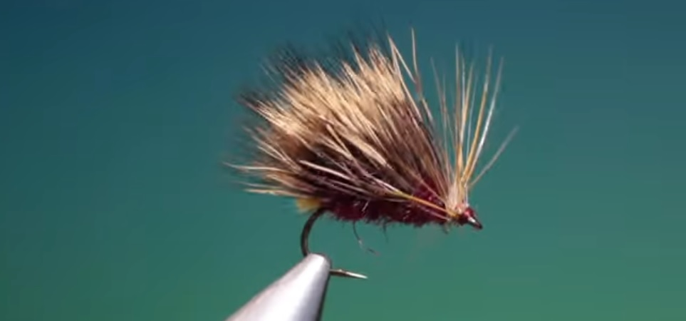 Vídeo atado moscas: Tying a Hot Spot sedgehog with Barry Ord Clarke