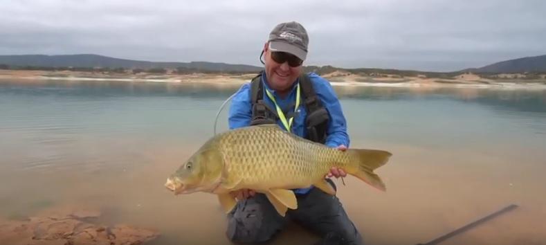 Vídeo. Spanish Gold