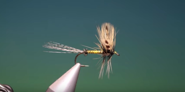 Vídeos montaje moscas: Fly Tying-a spent green drake with Barry Ord Clarke
