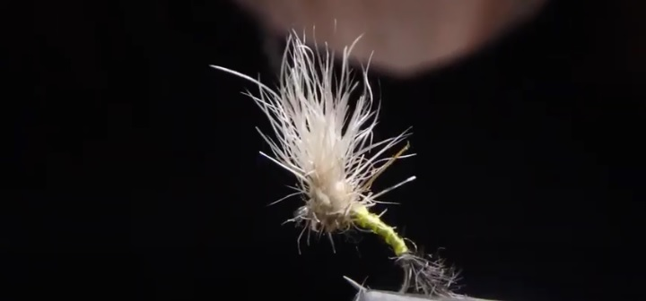 Vídeo montaje: Fly tying BAETIS EMERGER MAYFLY by Jorge G